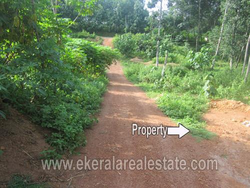 konchira kanyakulangara trivandrum land plots property sale kerala