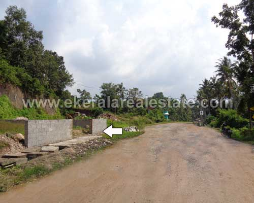 technopark real estate properties residential land sale near infosys technopark