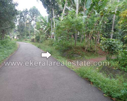 road frontage land and house at pirappancode trivandrum kerala real estate