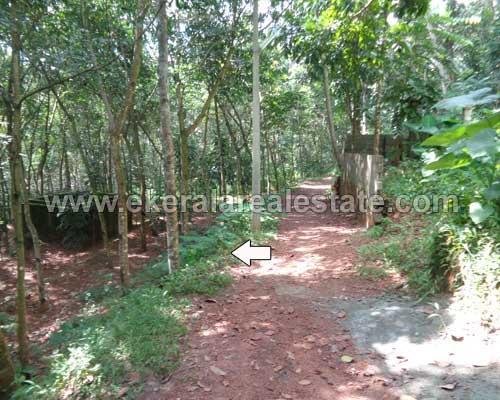 balaramapuram trivandrum lorry plot property sale kerala
