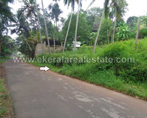 neyyattinkara trivandrum road frontage plot property sale kerala