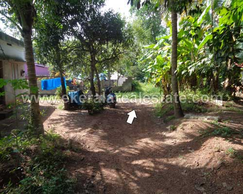 lorry plot sale in mamom near attingal kerala real estate