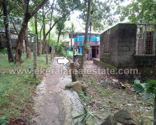 5 cent house land plots for sale in peyad trivandrum kerala real estate