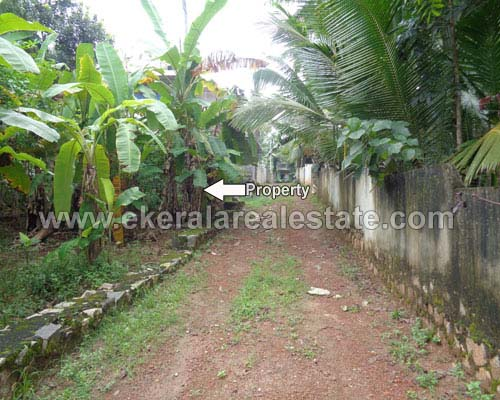 kallayam real estate kallayam residential land plots in sale trivandrum kerala