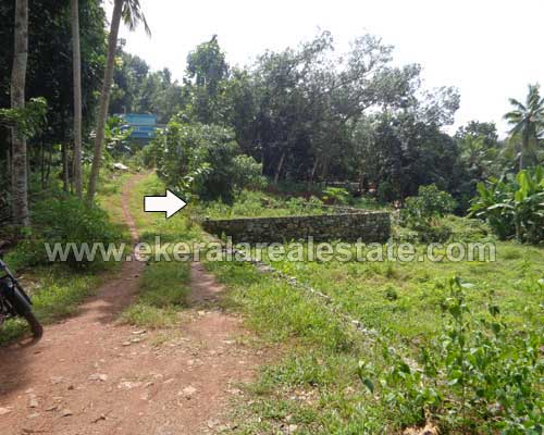 4 cent land plots sale at powdikonam trivandrum kerala real estate