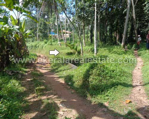 house plots sale at Vembayam koppam trivandrum kerala real estate