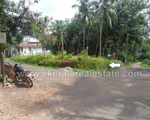 house plots sale at Peyad near Skyline Villas trivandrum kerala