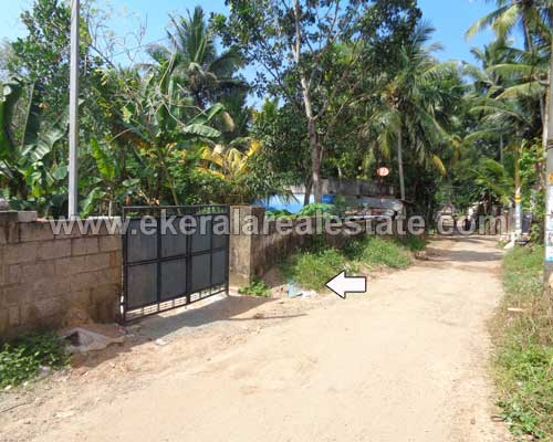 kerala real estate properties pallichal residential square land sale in pallichal