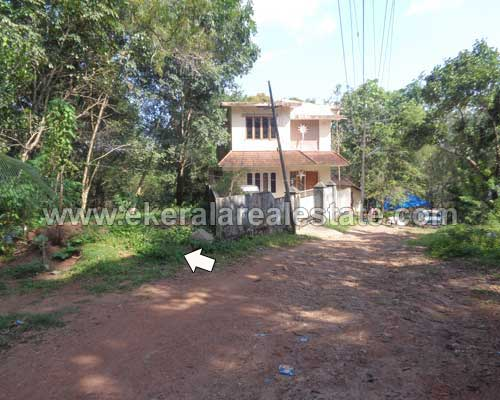 kerala real estate properties vattappara residential house plot sale in vattappara