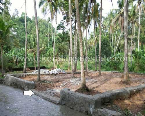 kerala real estate properties kariavattom residential house plot sale in kariavattom