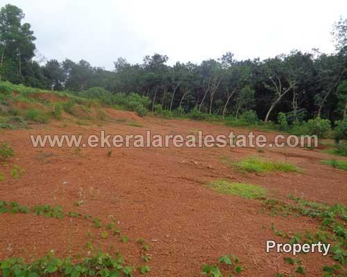 3 acres land plots sale in Peyad trivandrum Peyad real estate