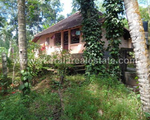 residential land and old house property sale in Kachani trivandrum Kachani real estate