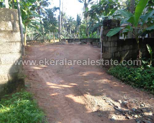 residential land property sale in Neyyattinkara trivandrum kerala real estate