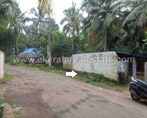 kerala real estate pravachambalam residential land plots sale in pravachambalam trivandrum