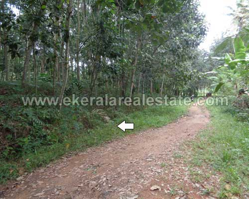 residential land sale at Thonnakkal trivandrum kerala real estate