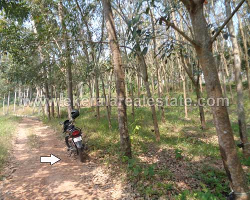 kerala real estate land plots sale in Chenkottukonam trivandrum