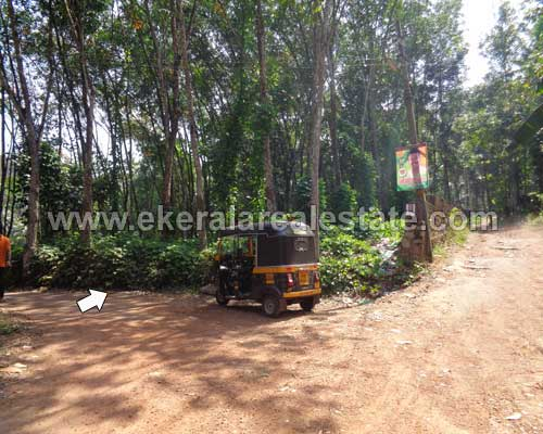 Nedumangad trivandrum Residential Lorry Plots Nedumangad real estate properties sale