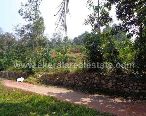 60 Cent Land Sale in trivandrum Mangalapuram properties Mangalapuram