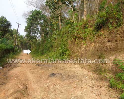 rubber plantation 2 Acres for sale at erinjayam nedumangad kerala real estate
