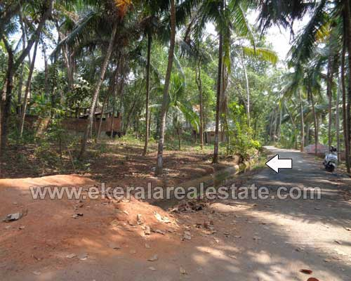 Neyyattinkara land plots for sale at Neyyattinkara properties thiruvananthapuram