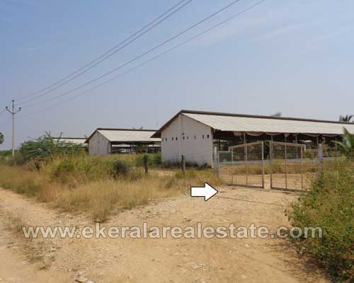 Tirunelveli tamil nadu land for sale Kasthuri Rangapuram Village Tirunelveli real estate