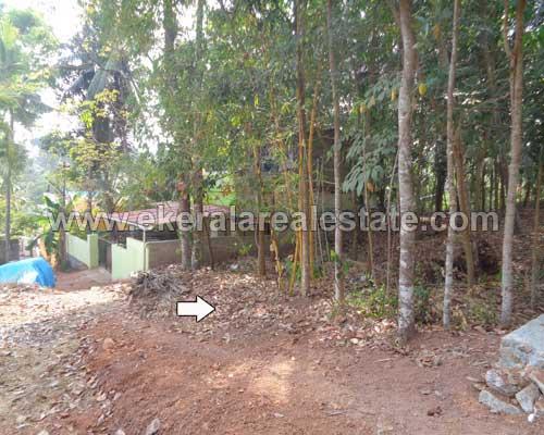residential land plots for sale kunnapuzha thirumala trivandrum thirumala real estate