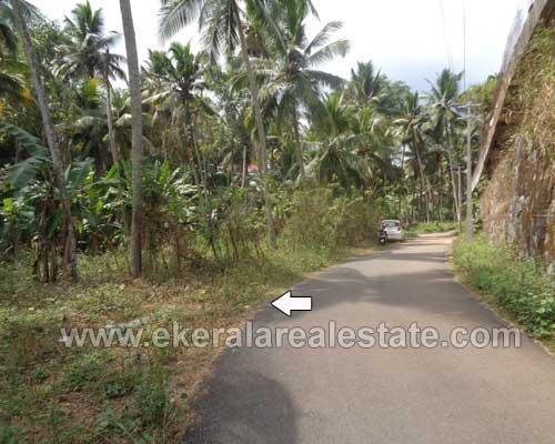 trivandrum karakulam residential land plots 14 cents for sale kerala real estate