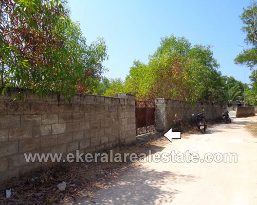 trivandrum real estate Kaniyapuram residential land sale in Channankara near Kaniyapuram