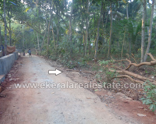 kanjiramkulam property sale kanjiramkulam 20 cents plots sale trivandrum kerala real estate