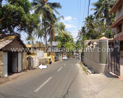 pmg real estate kerala pmg 8 cents house land plots for sale