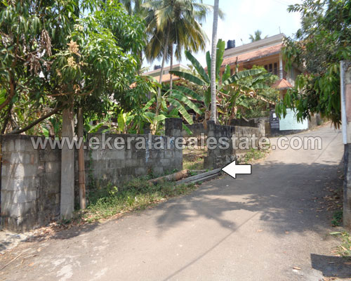 kerala real estate trivandrum Nettayam land plot for sale
