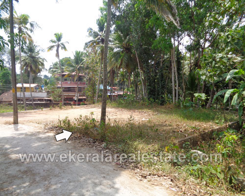 kerala real estate trivandrum Kallayam land plot for sale