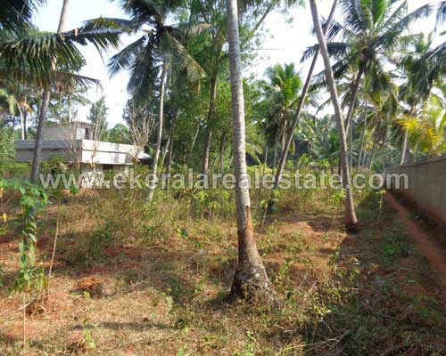Neyyattinkara house plots for sale kerala real estate trivandrum Neyyattinkara