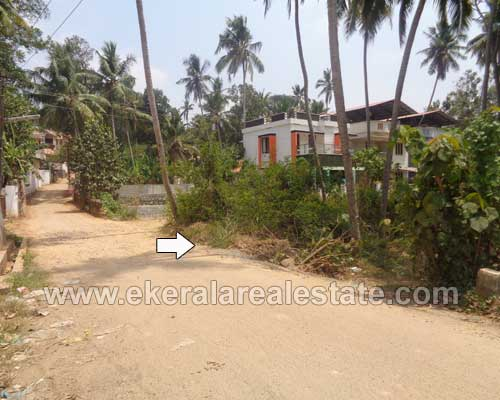 lorry plots 18 cents for sale at Kanjirampara trivandrum kerala real estate