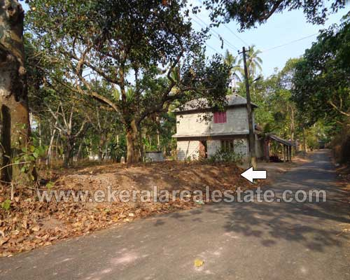 residential lorry plots 43 cents for sale at Varkala trivandrum kerala real estate