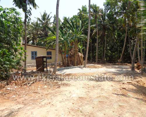 kerala real estate Maruthankuzhy Residential Land sale in Maruthankuzhy trivandrum
