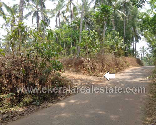 Lorry Plots for sale kattakada Thiruvananthapuram kattakada Plots sale