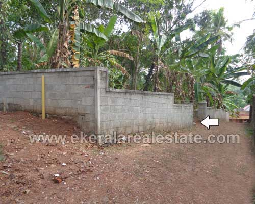 residential land 13 cents for sale in nedumangad Thiruvananthapuram nedumangad land sale