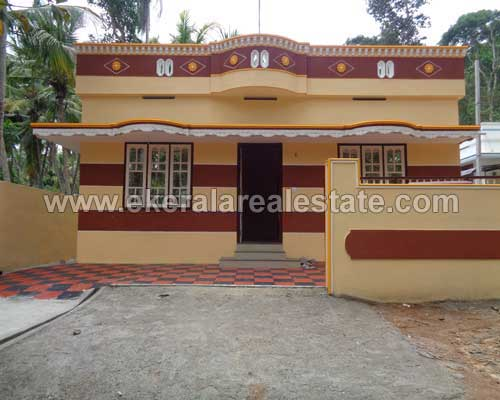 newly constructed house for Sale in peyad Thiruvananthapuram peyad Properties