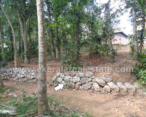 Karakulam thiruvananthapuram Residential land for sale in Karakulam real estate kerala