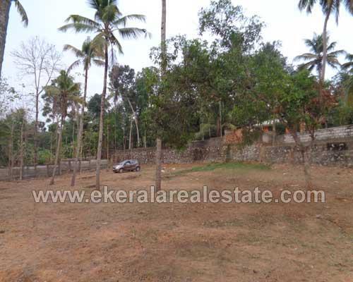 Ithikkara Adichanalloor Kollam land for sale Kollam real estate kerala