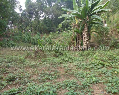 37-Cents-Residential-Land-for-sale-at-Vattappara-Trivandrum-Kerala123