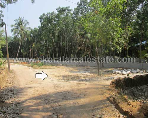 land sale in Mangalapuram thiruvananthapuram kerala real estate