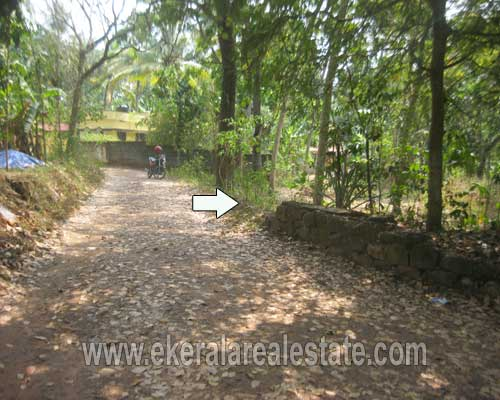 Edava Varkala properties trivandrum Edava 17 cent land for sale at kerala properties