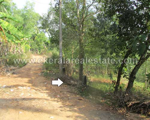 Balaramapuram real estate Balaramapuram land plot for sale at trivandrum kerala real estate