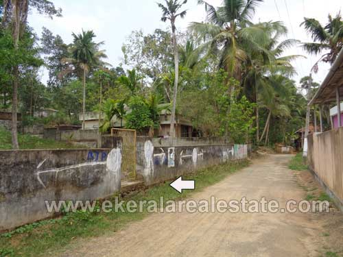 Trivandrum Balaramapuram Properties Plot for Sale at Mudavoorpara Balaramapuram