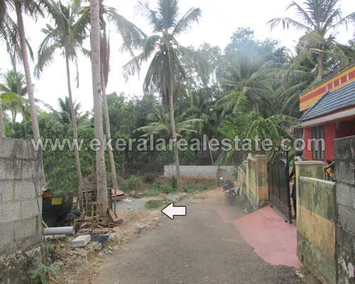 Trivandrum real estate Peyad Properties residential land at Puliyarakonam Peyad
