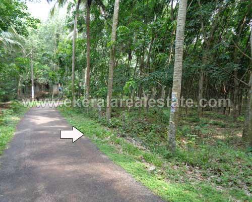 Kattakada real estate properties Kattakada Kallikadu land plots sale trivandrum