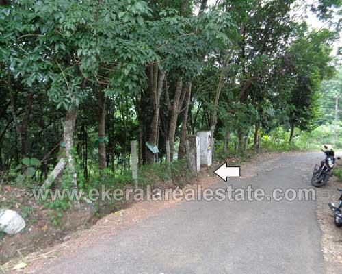 Peyad Real estate Properties Rubber Estate at Vilappilsala Peyad Trivandrum
