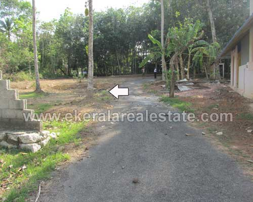 Thiruvananthapuram Properties kerala Attingal Avanavanchery House plot for sale